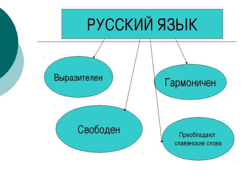 Русский язык – развивающееся явление. Русский язык и история