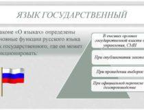 Русский язык и современность. Функционирование русского языка