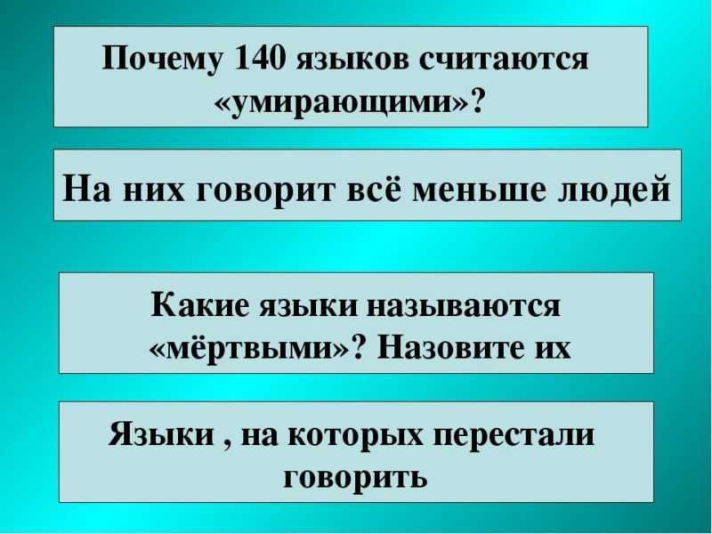 Функционирование русского языка