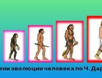 Гипотезы о генезисе человека на Земле. Наиболее распространенные версии.