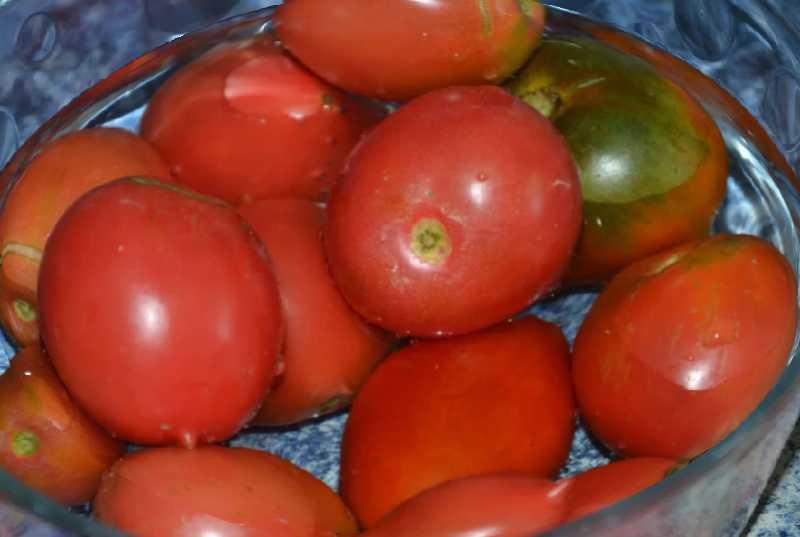 冬天番茄酱食谱