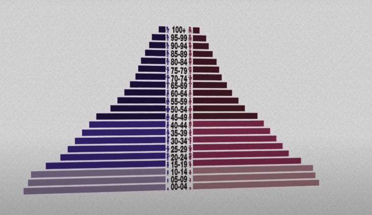 как выглядит половозрастная пирамида